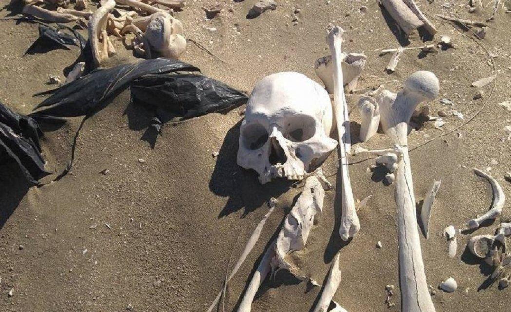 Andaban en cuatriciclo y encontraron 20 esqueletos humanos