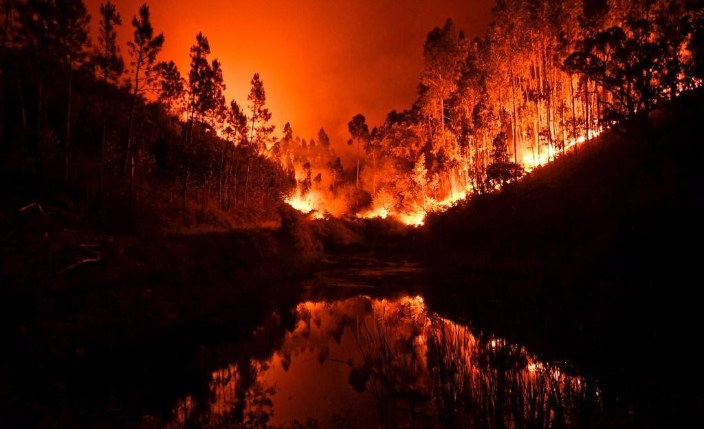 Voraz incendio forestal provoca más de 60 muertos