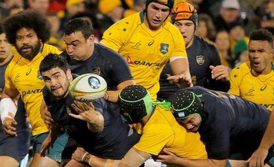 Rugby Championship: Los Pumas perdieron con Australia en Canberra