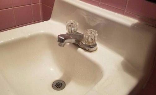 """Encontró a la ardilla de """"La era del hielo"""" en su baño y se volvió viral"""