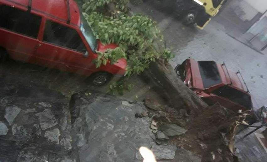 Fuerte temporal azotó varias zonas del país y causó dos muertos