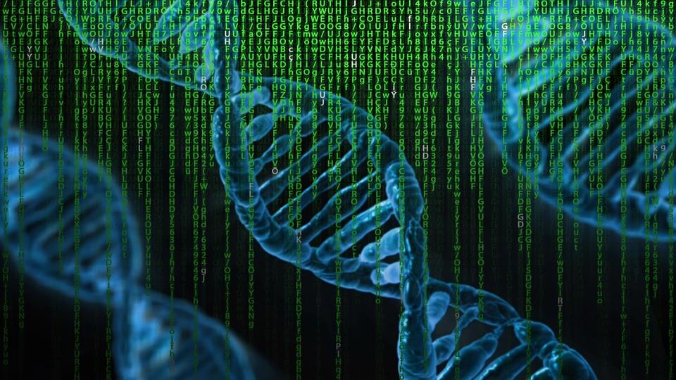 Manipulación genética en embriones humanos, ¿un paso adelante o hacia atrás?