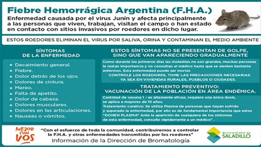 fiebre hemorrágica argentina que es