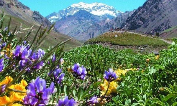Mendoza busca estar entre las 7 Maravillas Naturales de Argentina