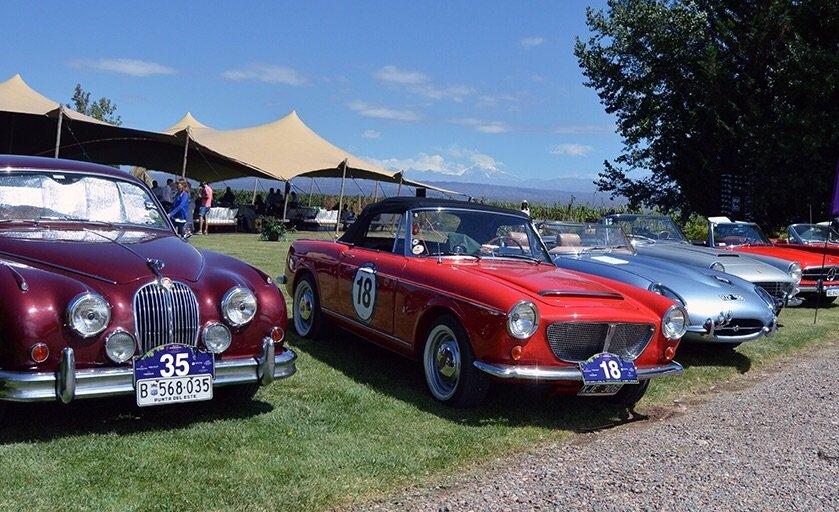 Rally Bodegas