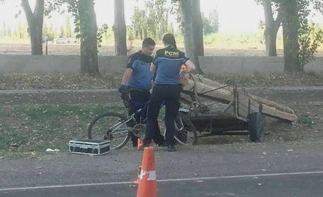 Un chico pelea por su vida tras ser atropellado por un carro