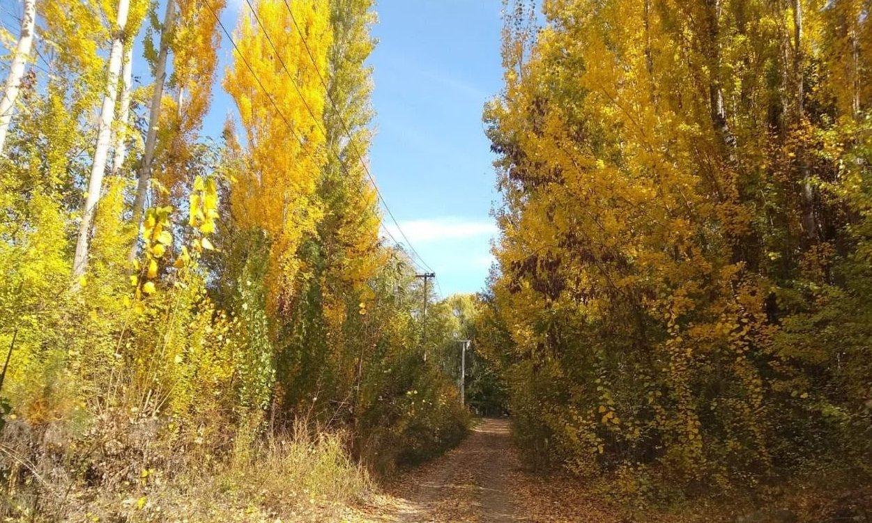 Miércoles soleado y agradable en Mendoza