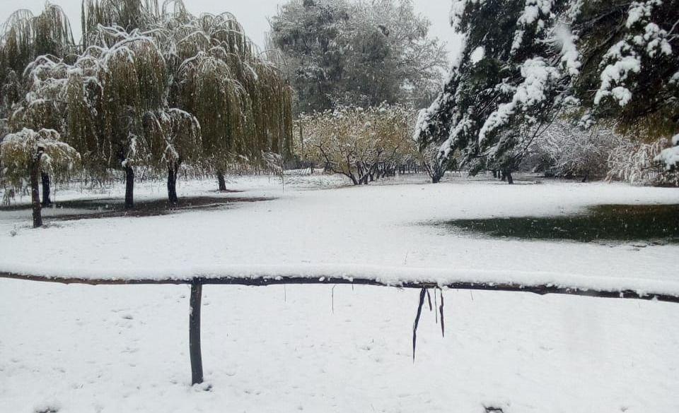 Las imágenes de la primera nevada en Mendoza