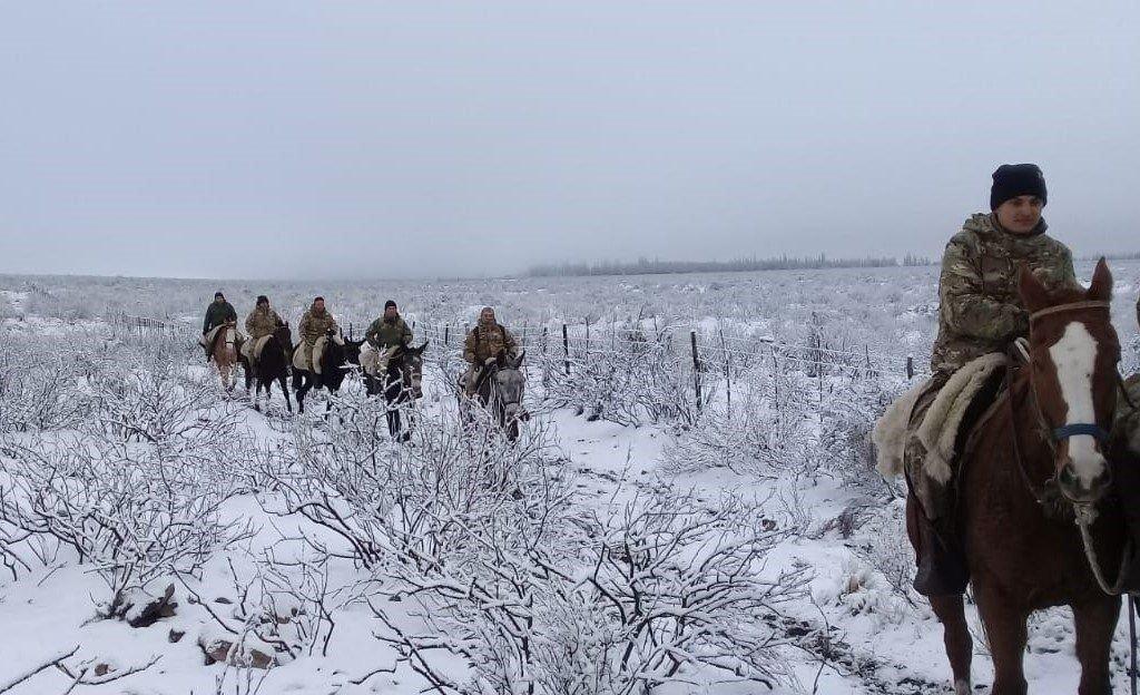 Las imágenes del rescate de los dos mendocinos perdidos en la nieve