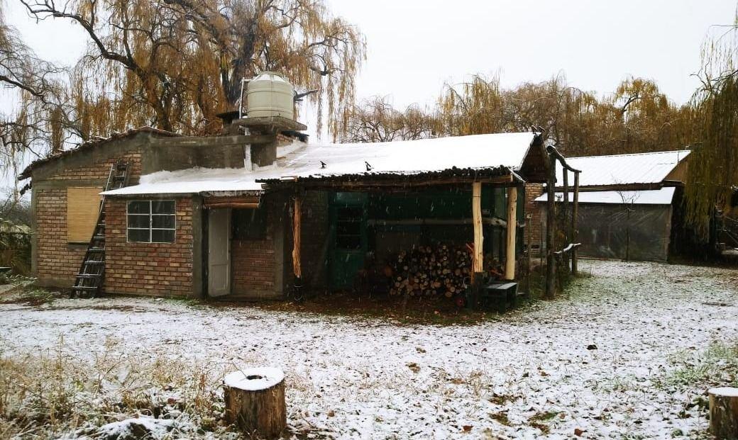 FOTOS | La nieve llegó a Mendoza