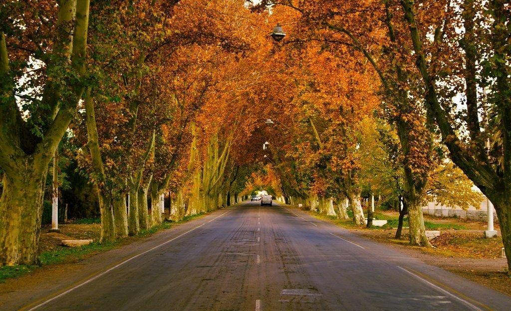 Con temperatura en ascenso, se despide el otoño en Mendoza