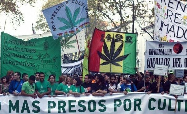 Nuevo Código Penal: permitiría despenalizar el consumo de drogas