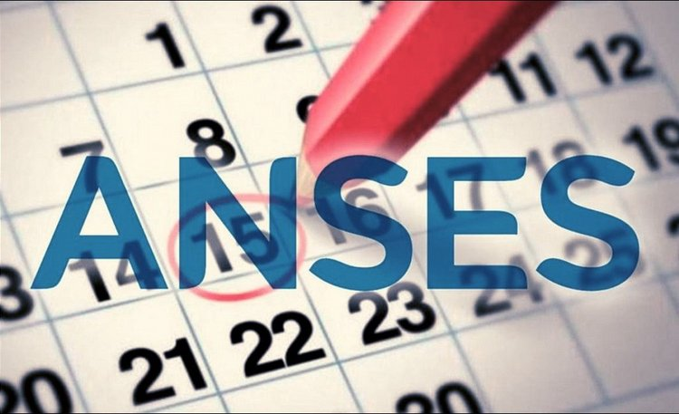 Calendario Julio 20019.Anses Calendario De Pago Julio Agosto 2019