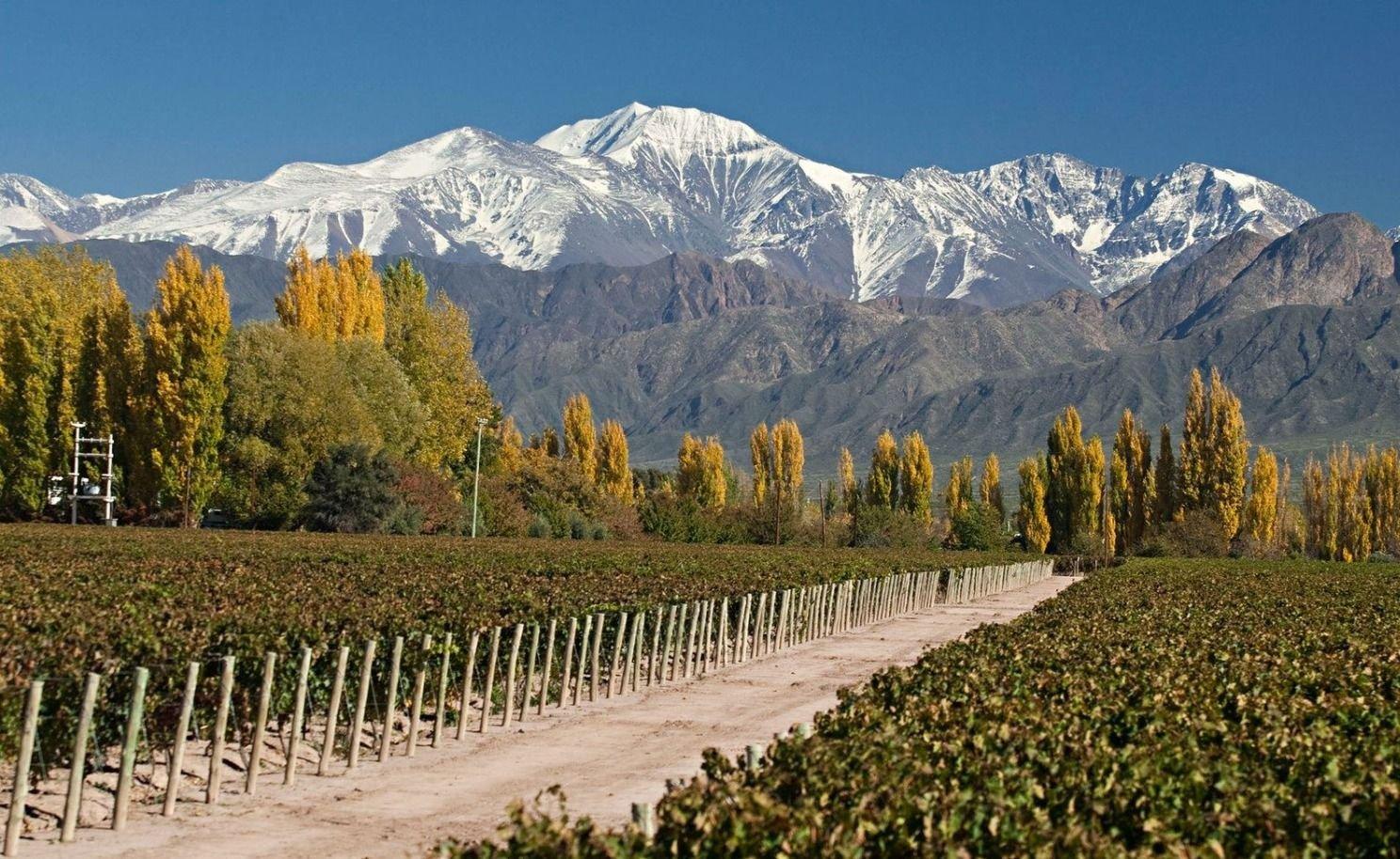 Sábado soleado y agradable en Mendoza: la antesala del frente frío que llegará
