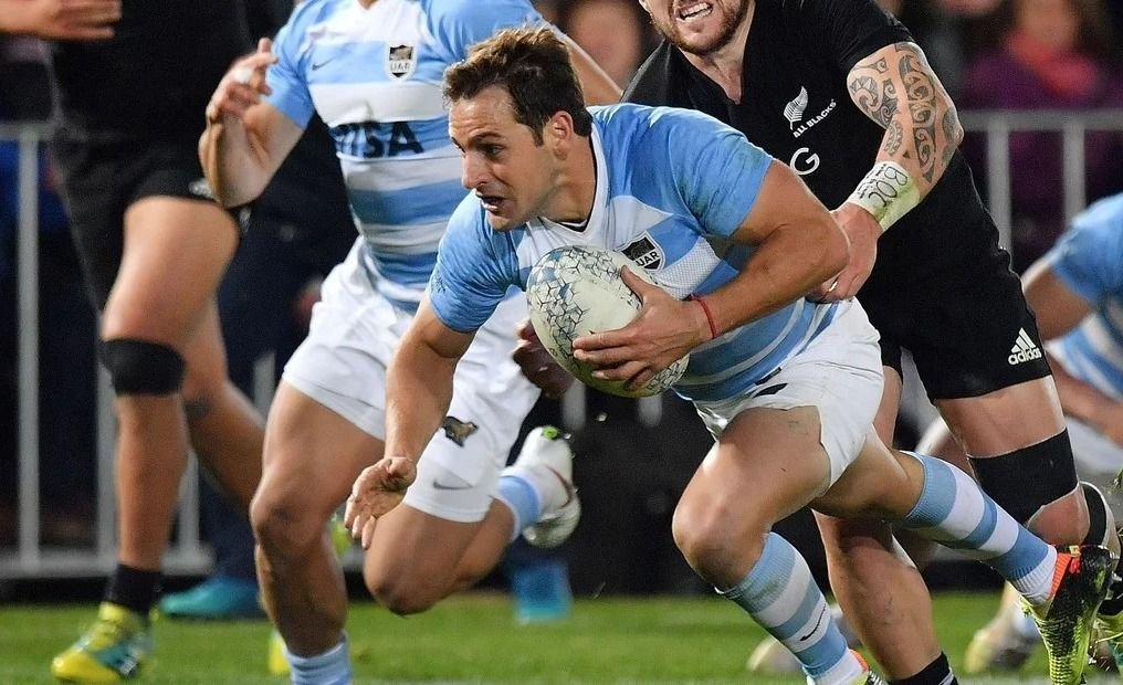 Pumas - All Blacks | Formaciones, historial, entradas, TV