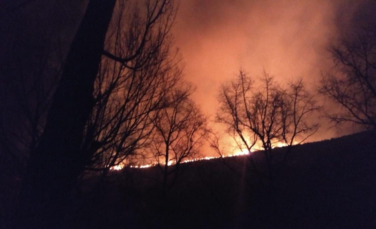 En fotos: voraz incendio en cerros de Potrerillos