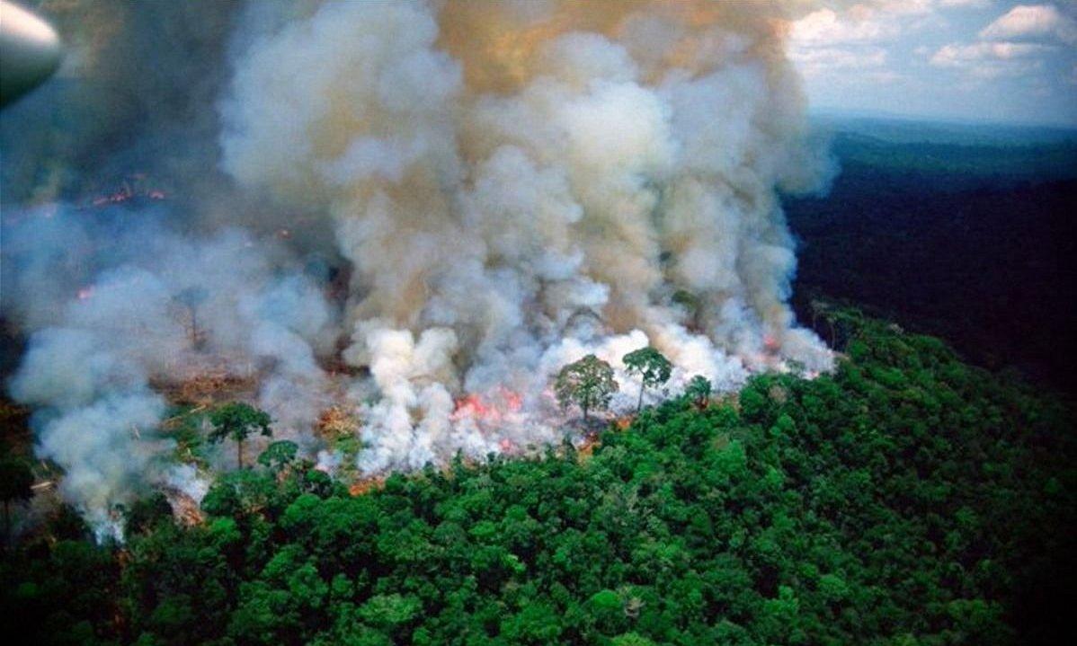 Toda la información que tenés que saber sobre el incendio en el Amazonas