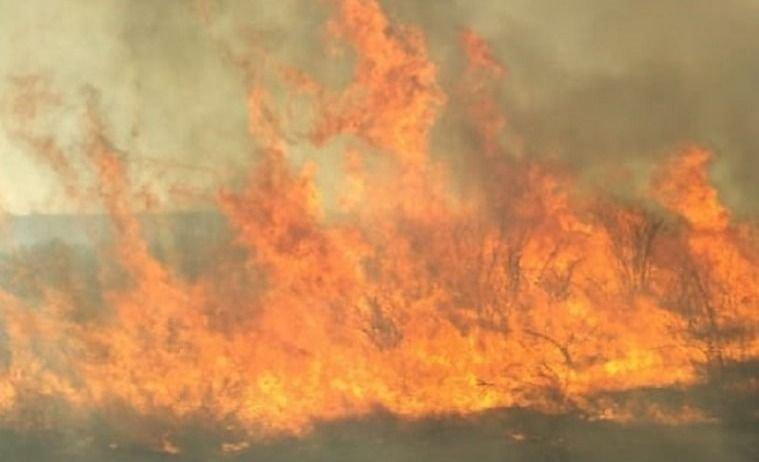 Un incendio consumió más de 100 hectáreas en Monte Comán
