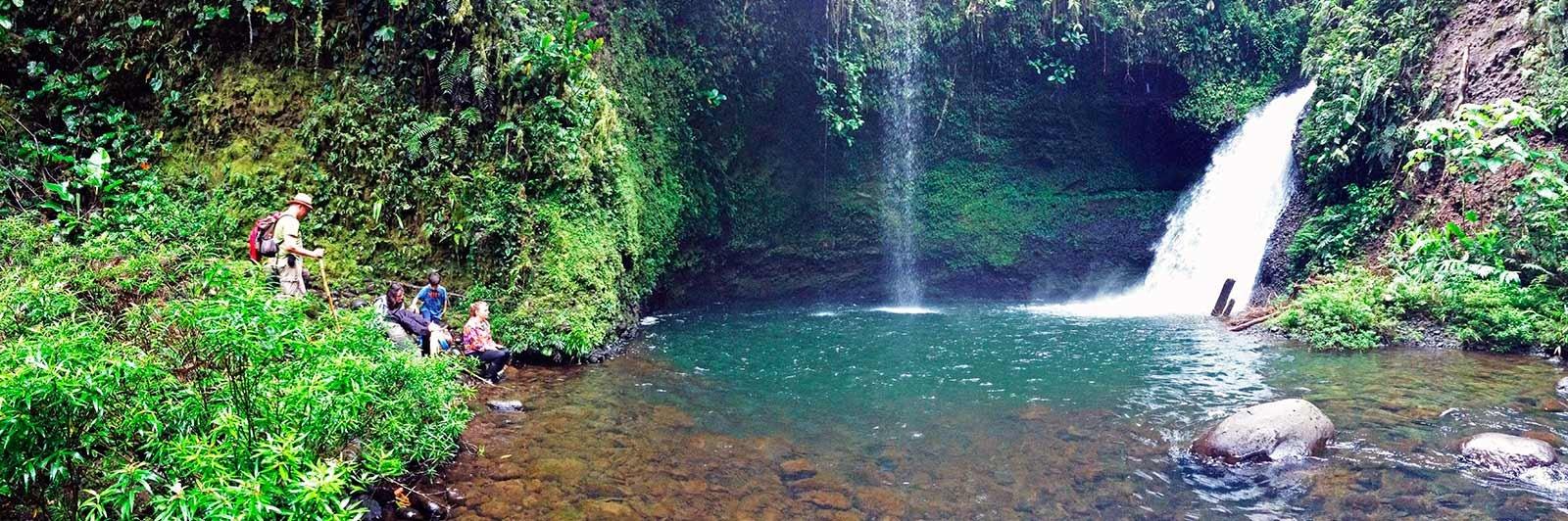 Selva amazónica- Ecuador