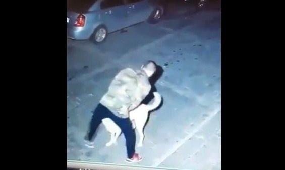 Mujer quedó impactada al ver lo que hacen su perro y su vecino de noche