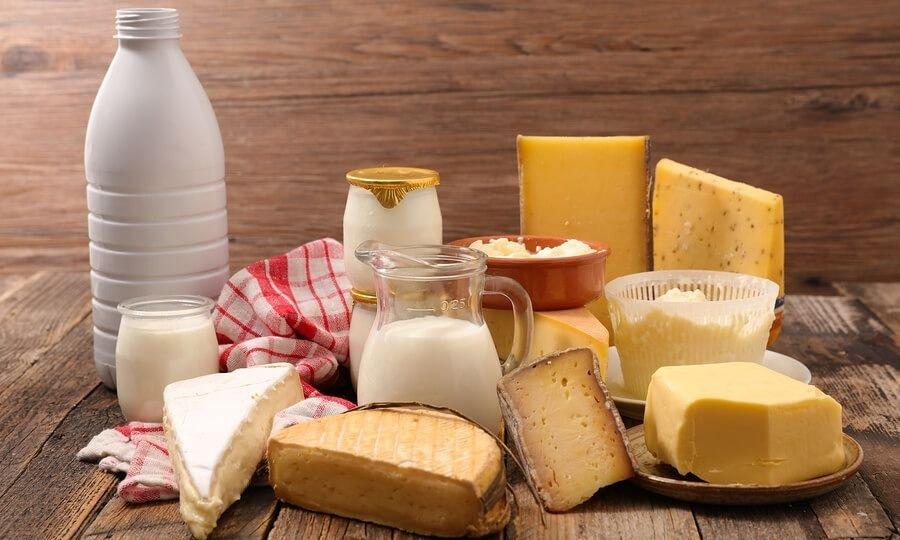La Sociedad Argentina de Nutrición afirma que los lácteos no generan aumento de peso