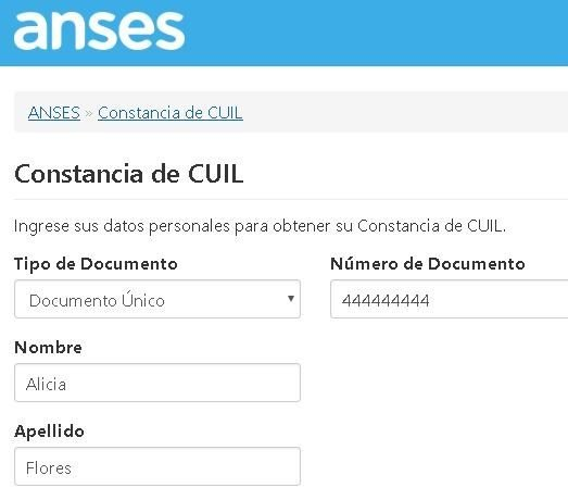 anses cuil online