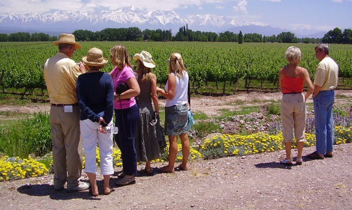 "Gabriela Testa: ""No hay ningún turista que venga a Mendoza que no visite una bodega"""