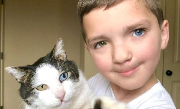 Un niño adoptó a un gato para superar el Bullying